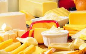 Как начать производство сыра как бизнес в домашних условиях